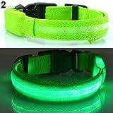 quanjucheer LED-Hundehalsband, blinkendes Licht, Sicherheitshalsband, weich, verstellbar, Halsband für Haustiere
