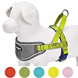 Blueberry Pet 62-75cm Brust 3M Multifunktions Reflektorstreifen Verstellbares Neopren Gepolstertes Hundegeschirr in Zitrusgrün