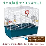 Ferplast Rectangular Shape Cage for Exotic Birds and Canaries, 49 x 30 x 48.5 cm 4