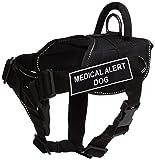 Dean & Tyler schwarz mit Reflektierendem Rand Fun Hundegeschirr mit Gepolsterter Brust Stück, Medical Alert Hund, klein, passend für Umfang Größe 22bis 27