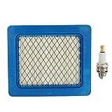 GOZAR Kit Di Servizio Filtri Plug & Air Per Falciatrici Honda Izy/Hrx E Gcv 135/160/190