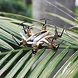 Lorenlli H20 2.4G Mini RC Airplane Remote Control Quadcopter 6 Assi Aereo modalità Aereo 2 Indoor Unmanned Aerial Vehicle Hexa-Copter