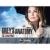 Grey's Anatomy - Staffel 12 [dt./OV]