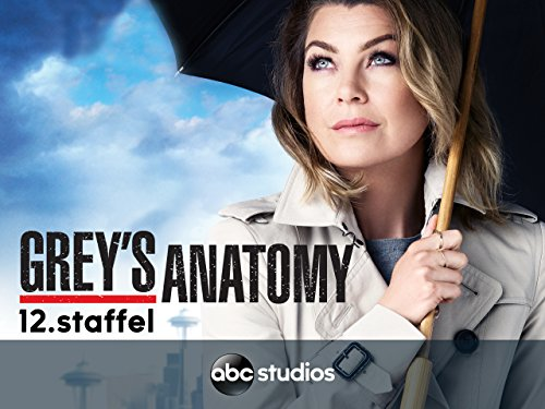 greys anatomie staffel 12