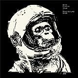 Spacebound apes | Cowley, Neil (1972-....). Compositeur