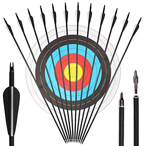 VERY100 Pfeile und Bogen Pfeil aus Carbon für Bogenschießen 30 Zoll 500 SP für Recurvebogen und Compoundbögen Bogensport 12 Stück mit Zielscheiben