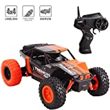 deAO Fast Fuoristrada RC Racing Car 2.4 GHz Remote Control High Speed Race Vehicle Toy Auto 4 x 4 Buggie Jeeps (Arancione)