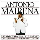 Grands Cantaores du Flamenco, Volume 9