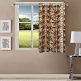 Queenzliving Elements Curtain, Window 5 feet- Pack of 1, Brown