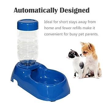 Idepet Distributeur d'eau pour animal domestique, fontaine à eau gravité, ensemble de bols de distributeur d'eau automatique avec bouteille pour petit chien, chiot, chat, chaton