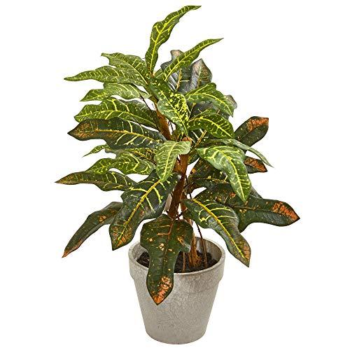 Nearly Natural 4354 Croton Künstliche Seidenpflanze, 60 cm, grün