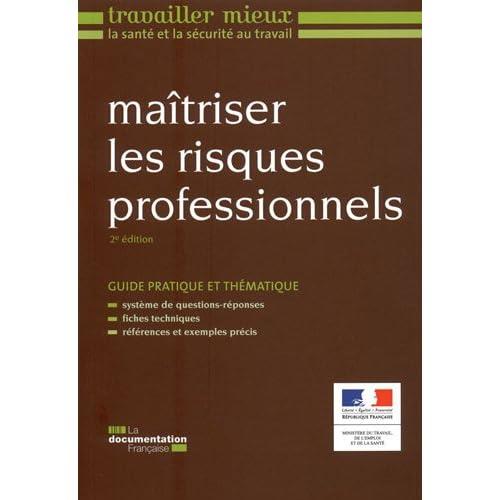 Maîtriser les risques professionnels (2e édition)