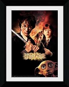 GB eye Ltd Harry Potter 40,6 x 30,5 cm Cadre photo 2 Dobby