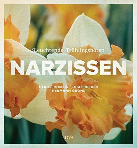 Narzissen: Leuchtende Frühlingsboten