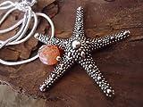 ✿ AGATE et STARFISH ✿ Chaîne serpent d'argent 925 avec pierre semi-précieuse achat...