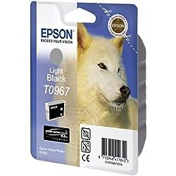 Epson T0967 Cartouche d'encre d'origine Gris Amazon Dash Replenishment est prêt