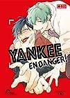 Yankee en danger ! Tome 01 - livre (manga) - yaoi - hana collection