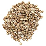 Green & Pure - High Yield Organic Vegetable Seeds - Coriander - Pack of 5 for Kitchen / Terrace / Home Garden