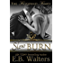 Slow Burn (The Fitzgerald Family Book 1) (English Edition)