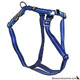 Feltmann Premium Hundegeschirr mit Alu-Max®, Soft- Nylonband, 75-100cm, 25mm, Streifen blau