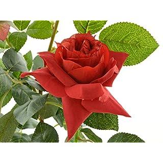 Aniba Design Kunstrose mit 2 Blüten und 1 Knospe rot ABROS017