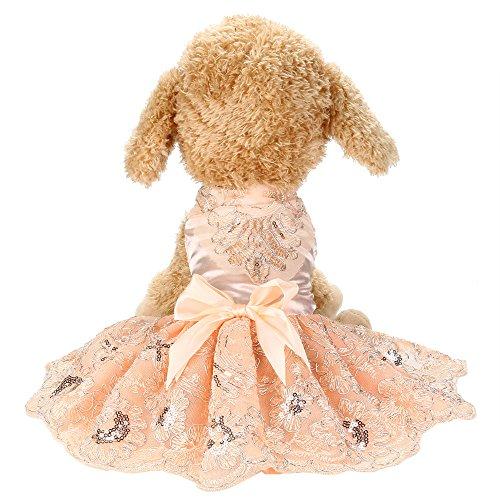 Haustier Kleid, Welpen Kleidung Outfit Party Spitze Prinzessin Hochzeitskleider für...