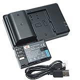 DSTE 2PCS DMW-BLF19E(2200mAh/7.2V) Batterie Chargeur Kit pour Panasonic DMW-BLF19,Panasonic DMC-GH3,DMC-GH4,DC-GH5
