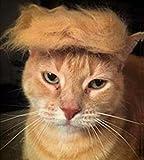 Fuji Peluca de Gato para Mascota, Disfraz de Cabeza de Perro, Juguete para Halloween, Navidad, Fiestas, Festivales