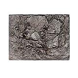 BZLine 3D Foam Rock Reptile Stein Aquarium Hintergrund Aquarium Board Decor (E)
