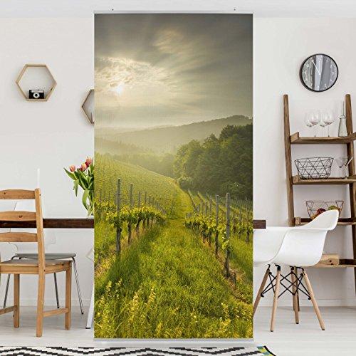 panneau-rideau-sunbeams-vineyard-250x120cm-support-au-choix-panneau-japonais-rideau-coulissant-panne