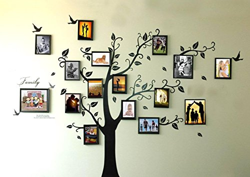 rainbow-fox-large-black-photo-frames-16-frames-memory-tree-photo-tree-wall-vinly-decal-decor-sticker
