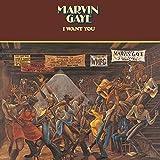 Marvin Gaye Funk
