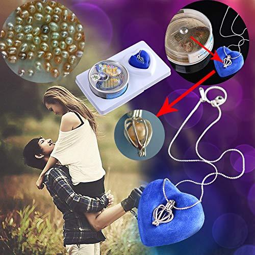 1 Kragen für das Liebeswunschset Colgante de gota de ostra,3 Pcs/Styles (Halloween Ninos Para De Disfraces)
