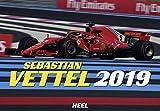 Sebastian Vettel 2019: Formel1-Pilot der Extraklasse