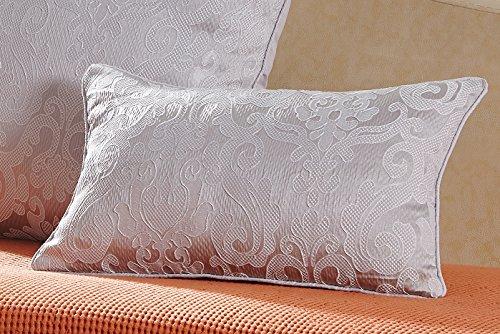 Pimpamtex cuscini con imbottitura tipo marsupio confezione 2cuscini da decorazione per casa, salotto, cameretta, sedie, divano e letto, 30x 50cm, modello jacquard damascato 30_x_50 grigio perla