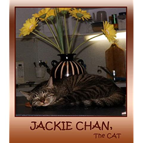 Jackie Chan, The Cat (English Edition)