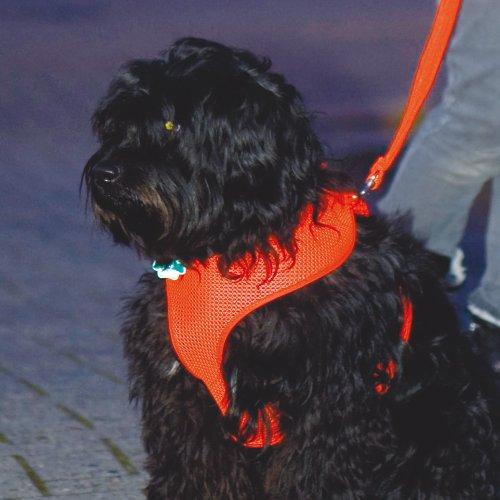 Mesh Original Leichtgeschirr Brustgeschirr orange für kleine bis mittlere Hunde Wasser und feuchtigkeitsdurchlässig schnelltrocknend und waschbar sehr leichtem leuchtendem luftigem Netzgewebestoff