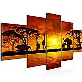 Bilder Afrika Sonnenuntergang Wandbild 200 x 100 cm Vlies - Leinwand Bild XXL Format Wandbilder Wohnzimmer Wohnung Deko Kunstdrucke Orang 5 Teilig -100% MADE IN GERMANY - Fertig zum Aufhängen 000251a