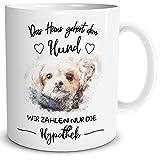 TRIOSK Tasse Hund mit Spruch Lustig Das Haus gehört, Geschenk Zum Geburtstag für Frauen Männer Hundebesitzer, Weiß Bunt, 300 ml