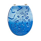 Carpemodo WC Sitz WC Deckel Klodeckel Antibakteriell Scharniere verchromt Größe 43x36 cm Wasser Foto/Blau