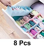 #3: Lifestyle - You 8 Pcs Undergarments Innerwear Drawer Organiser Partition Box (Multicolor)