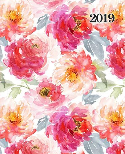Agenda 2019 Semana Vista