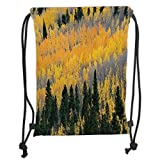 Custom Printed Drawstring Backpacks Bags,Fall,Colorful Aspen Forest in Colorado Rocky Mountains Western Wilderness USA Theme,Green Yellow Grey Soft Satin,5 Liter Capacity,Adjustable String Closur