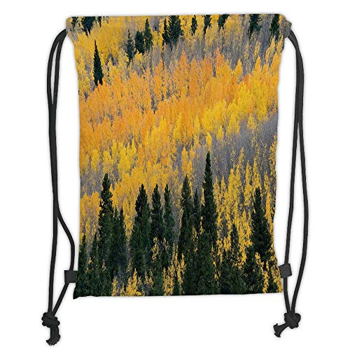 Trsdshorts Drawstring Backpacks Bags,Fall,Colorful Aspen Forest in Colorado Rocky Mountains Western Wilderness USA Theme,Green Yellow Grey Soft Satin,5 Liter Capacity,Adjustable String Closur -