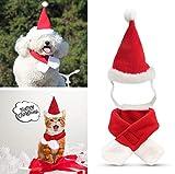 Sunshine D Hund Katze Kostüm, Haustier Weihnachten Xmas Kragen und Hut Set Weihnachten einstellbare Weihnachtsmütze Schal Xmas Fancy Dress für kleine Katze