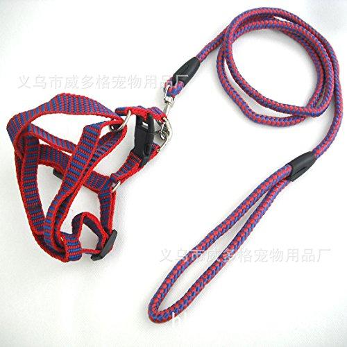 ZPP-Pet-Leine Brust umfasst fünf Quadratmeter Seil ziehen zurück + Brust,Rot/Blau,120cm*0.6cm