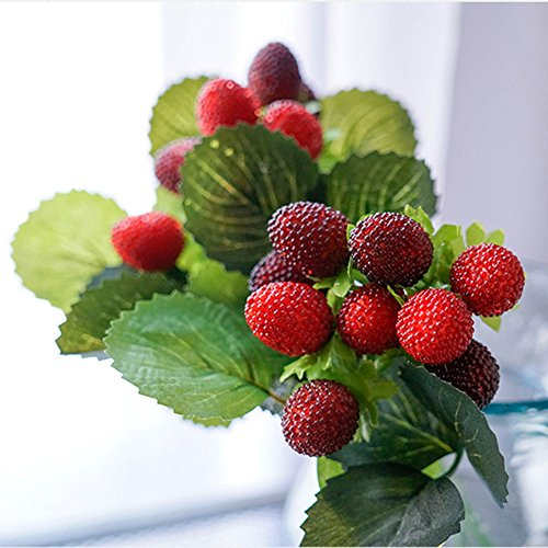 simulation-mulberry-fruit