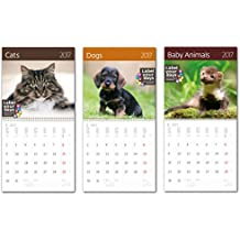Kalpa Calendari Da Parete 2017 Combo Pack Animali Esclusivo Collections-3 In 1 Combo CA01 + CA02 +