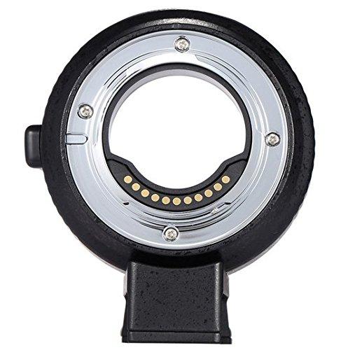 Preisvergleich Produktbild Gowe Autofokus AF Elektronische Lens Adapter Ring für Canon EOS EF/EF-S Objektiv zu verwenden für Olympus Panasonic m4/3Kamera