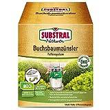 Substral Bio Buchsbaumzünsler Fallensystem Falle, grün, 1 Set